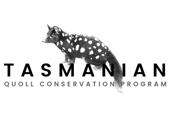 Quoll Conservation