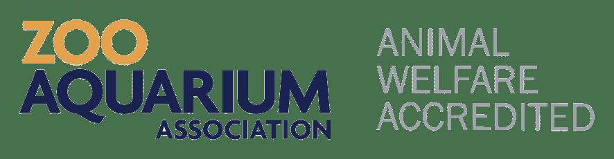 ZAA Logo